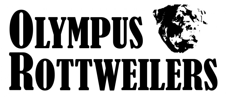 Olympus Rottweiler